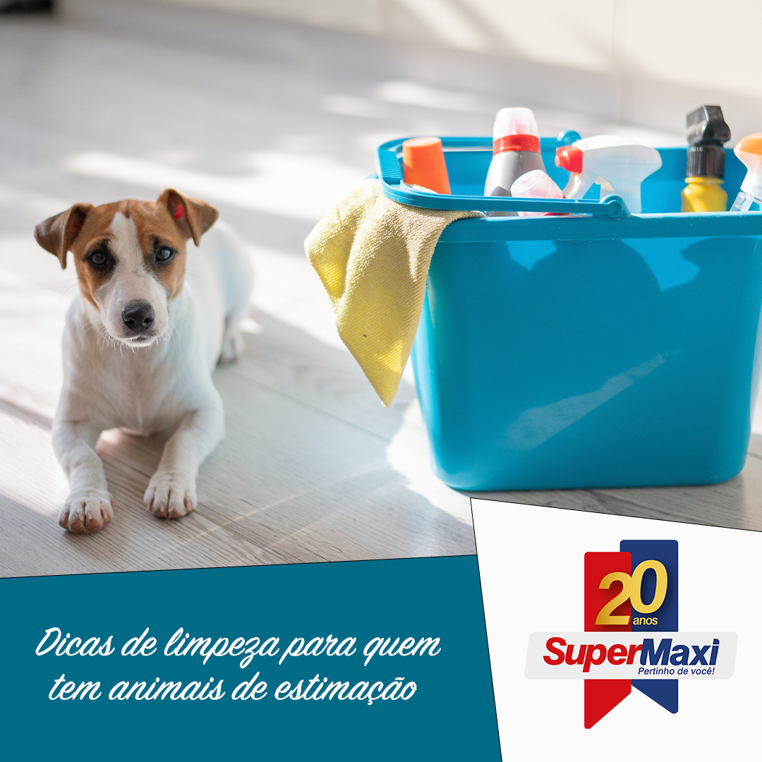 Dicas de limpeza para quem tem animais de estimação